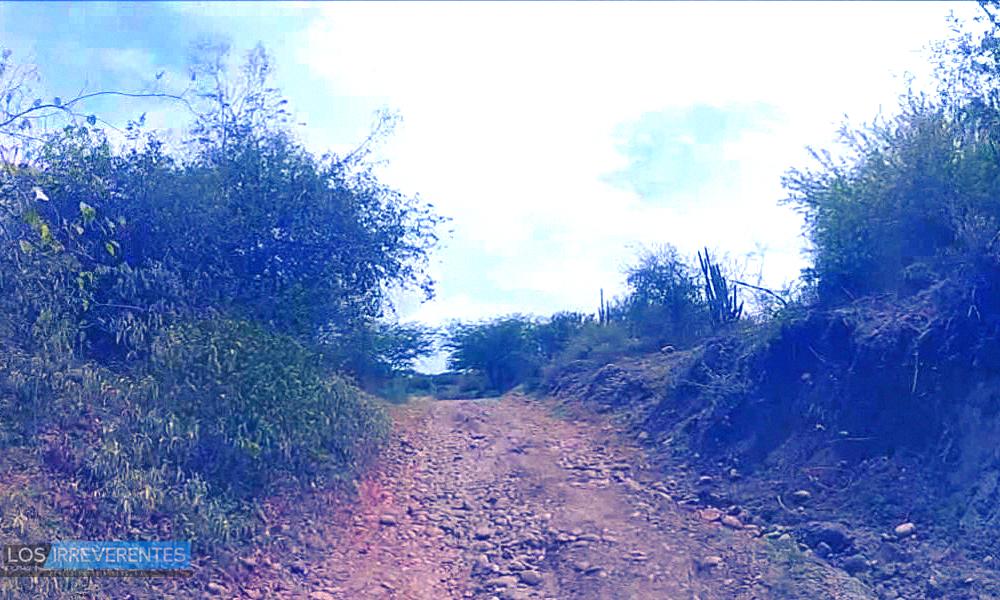 El sector agropecuario: una gran autopista sin pavimentar